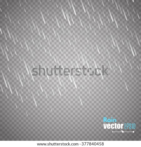 Vector rain isolated on transparent background. Vector illustration - stock vector