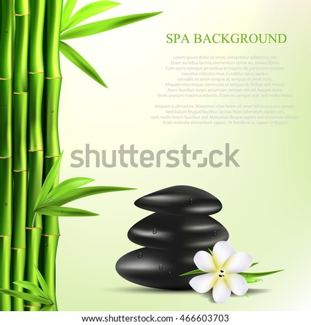 Vector realistic illustration of Spa