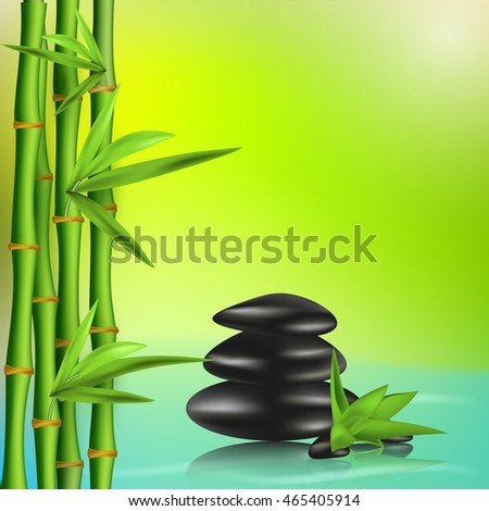 Vector realistic illustration of Spa stones