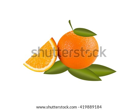 vector realistic orange on a white background - stock vector
