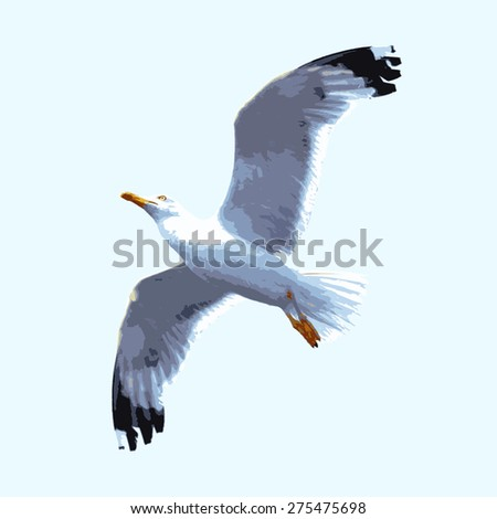 vector realistic seagull - stock vector