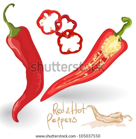 Vector red hot chili peppers  on white. - stock vector