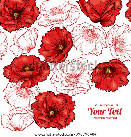 beautiful red poppy isolated on white background stock