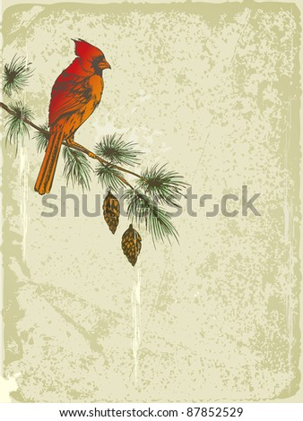 vector retro Christmas background with Cardinal bird - stock vector