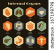 Vector retro icons of internal human organs Flat design - stock photo