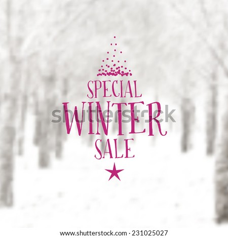 Vector Retro Winter Banner Typography Winter Sale Label With Christmas Decoration In Blurred Landscape Background