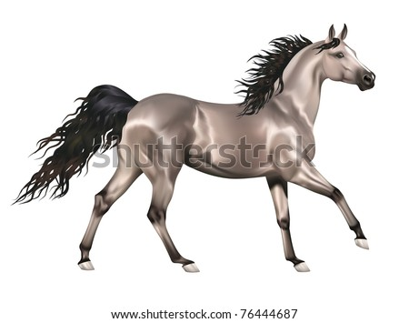 Vector running gray arabian horse isolated on white background - stock vector