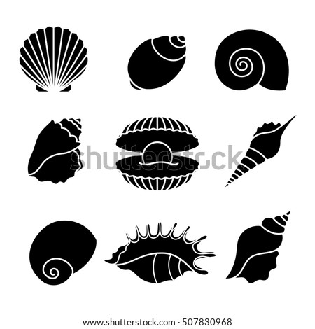Seashell Stock Images, Royalty-Free Images & Vectors ...