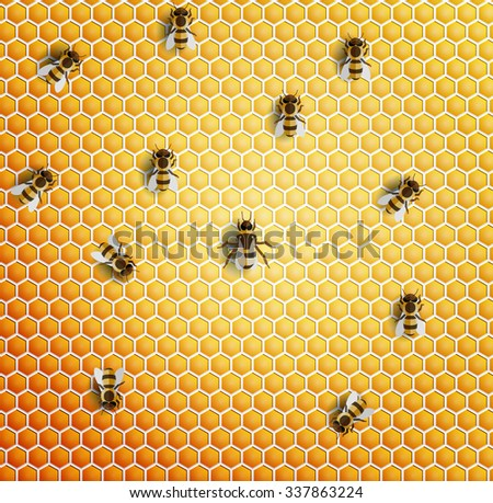 vector seamless honeycomb and bee