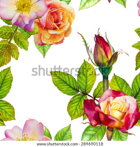 Vector seamless pattern. Watercolor floral hand-drawn illustration. Roses on a white background. - stock vector