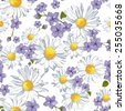 Vector seamless pattern with camomile flower and wild flower. Summer background, vector illustration.  - stock vector