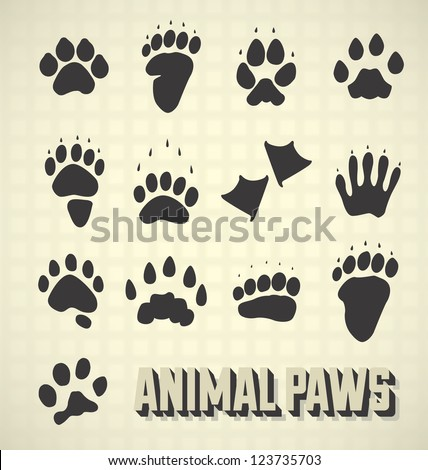 Vector Set: Animal Paw Prints Collection