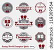 Vector Set: Boxing World Champion Labels and Icons - stock vector