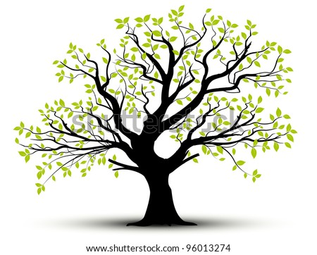 vector set - decorative tree and green leaves with shadow - stock vector