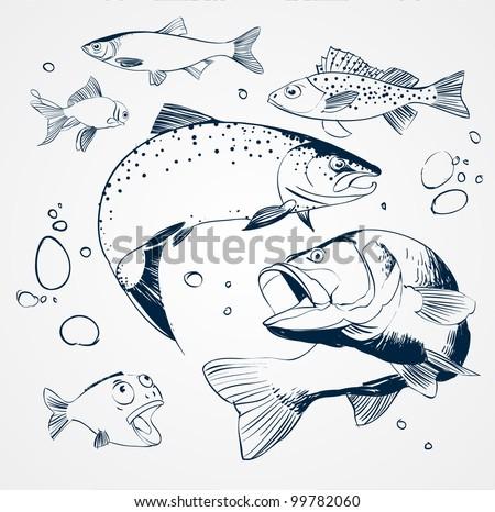 vector set: fish - stock vector