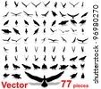 Vector set group or collection of black eagle silhouette isolated on white background for birds,animal,wildlife,symbol,,hawk,fly,flight,emblem,wild,decoration,wings,power,conceptual,falcon or insignia - stock vector
