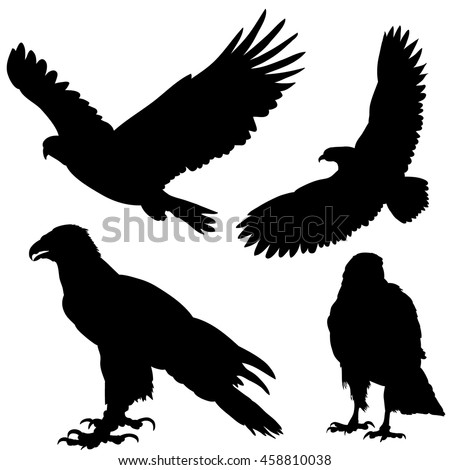 vector, set, isolated, silhouette of an eagle