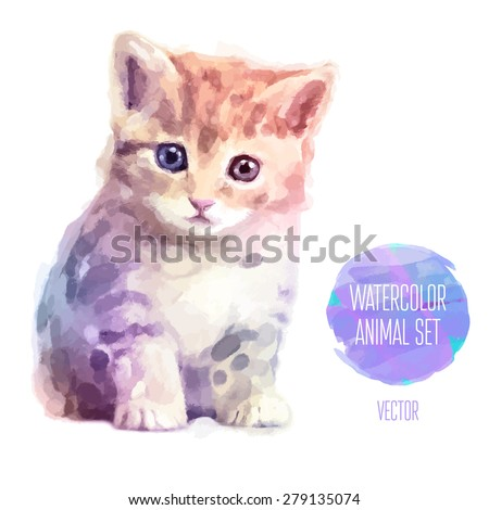 Vector set of animals. Cat hand painted watercolor illustration isolated on white background - stock vector