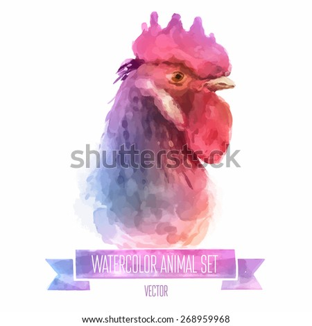 Vector set of animals. Cock hand painted watercolor illustration isolated on white background - stock vector