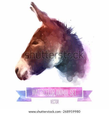 Vector set of animals. Donkey hand painted watercolor illustration isolated on white background - stock vector