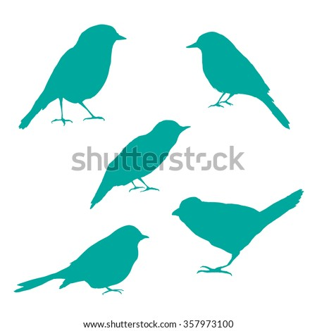 Vector set of bird silhouettes. Birds silhouette different vector illustrations. - stock vector