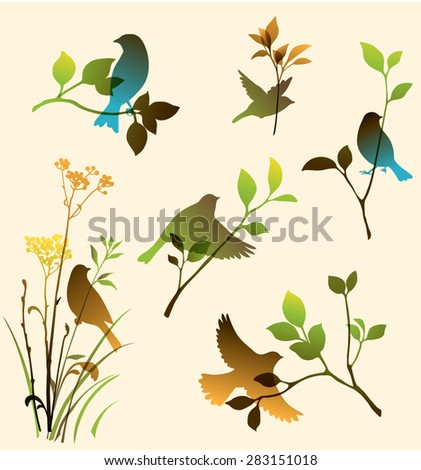 Vector set of birds and twigs. Decorative nature elements - stock vector