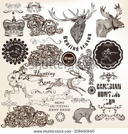 Vector set of calligraphic elements for hunting design - stock vector