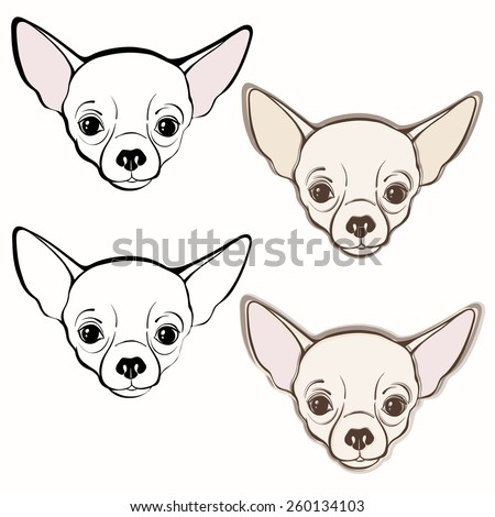 vector set of chihuahuas face hand drawn vector illustration sketch four variants