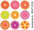 vector set of colorful citrus slices - stock vector