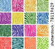 vector set of colorful skin textures of zebra - stock vector