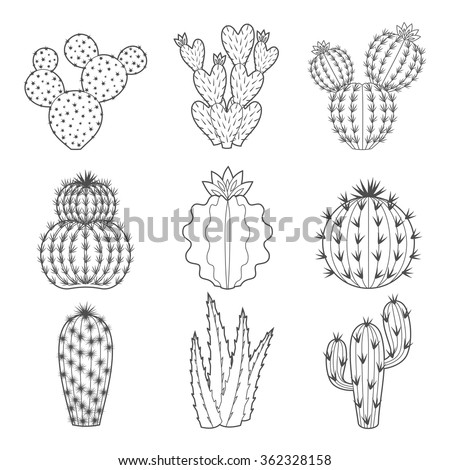 Vector set of contour cactus and succulent plants. Decorative isolated icons illustration. Cartoon style doodles. - stock vector