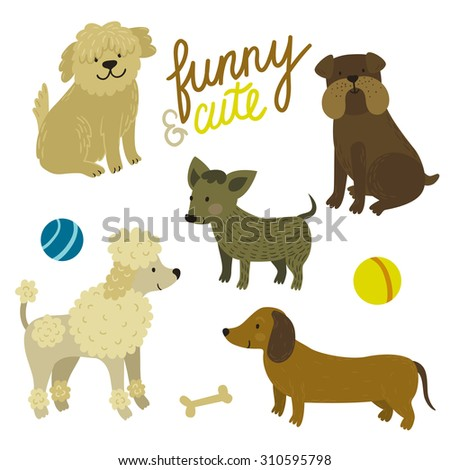 Vector set of cute dogs: bulldog, dachshund, bobtail, poodle,  chihuahua. Funny cartoon characters are isolated on white. Childish background. - stock vector