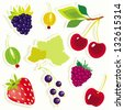 Vector set of decorative berries sticker. - stock vector