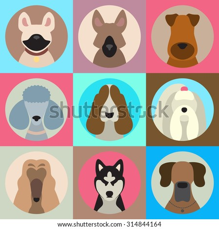Vector set of different dog breeds app icons in flat style - stock vector