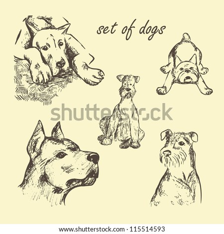 Vector Set of dogs hand drawn