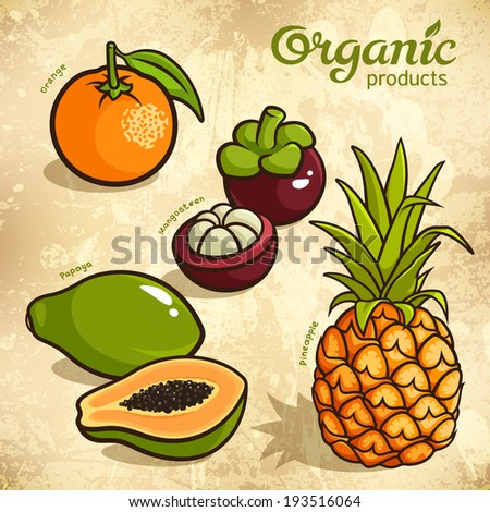 Vector set of exotic fruits: pineapple, orange, mangosteen, papaya