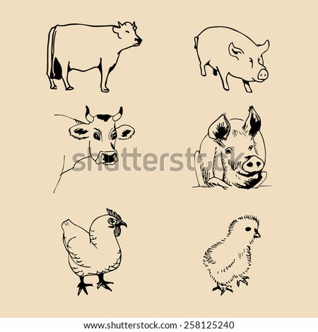Vector set of farm animals hand sketched illustrations with pig, cow and chicken - stock vector