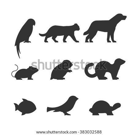 Parrot Silhouette Stock Images Royalty Free Images