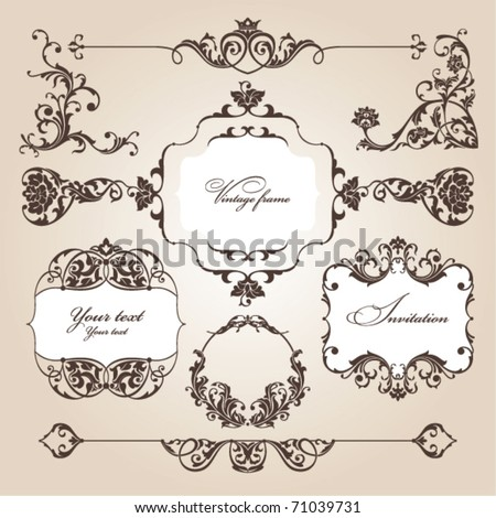 vector set of floral elements - stock vector