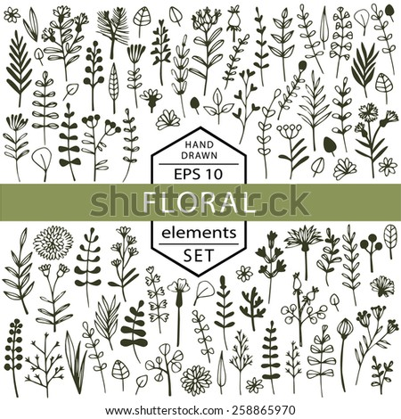 Vector set of floral elements painted by hand. Flowers, branches, petals, herbs, berries, drawn in black ink. - stock vector