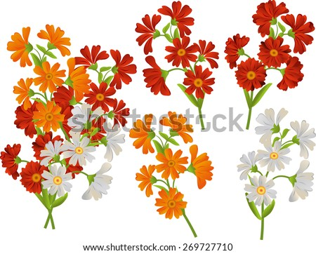 Vector set of flowers. Daisies, asters, calendula. Isolated. - stock vector