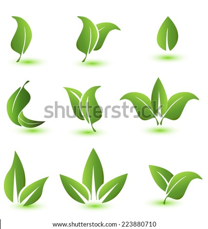 Vector set of green leafs icons elements image background - stock vector