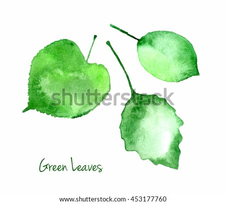 Vector set of green summer watercolor leaves isolated on white background for you eco design. Abstract watercolour paper grain textured leaves.