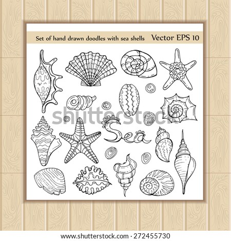 Vector set of hand drawn doodles with sea shells on white background. Sketches for use in design - stock vector