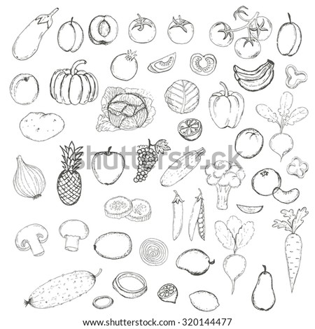 Vector Set of Hand Drawn Fruits and Vegetables