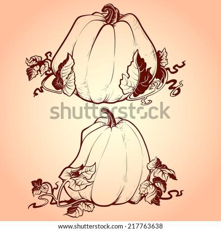 Vector set of hand drawn pumpkin. Outline - stock vector