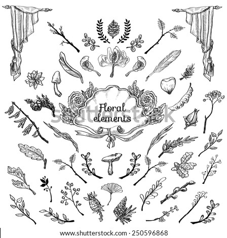 Vector set of handsketched labels: page decoration, Premium Quality and Satisfaction Guarantee Label, antique and baroque frames and floral ornaments | Old paper texture with grunge frames. - stock vector