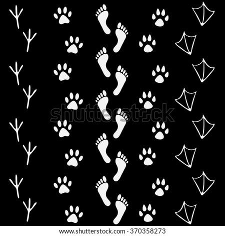 Crows Foot Print