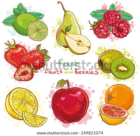 Vector set of illustration with fresh bright fruits and berries. Apple, kiwi, strawberry, raspberry, pear, lemon, lime, orange, grapefruit, mint. eps 10 - stock vector