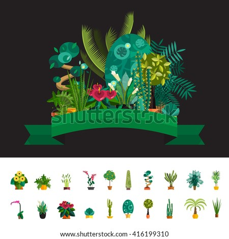 Vector Set of indoor tree home plants and flowers in pots. Illustration of big floor flower for interior decoration, good for infographic design, or elements for home or garden interior - stock vector